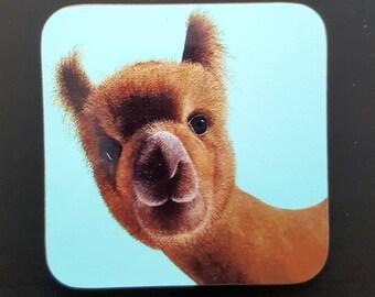 Coaster - alpaca