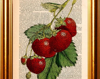 Fruit Print Strawberry  Print on Upcycled  1880's French Dictionary Page mixed media digital home and living