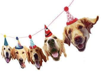 Golden Retriever Dogs Birthday Garland - photo reproductions on felt - funny golden retriever portraits birthday banner