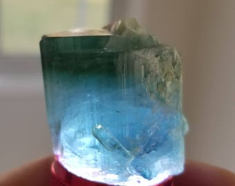 Bi Color Paraiba Tourmaline (Afganistan) 220.65 ct