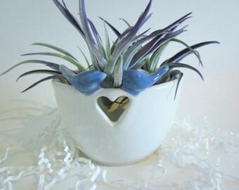 Blue bird air plant planter Yarn bowl, Knitting yarn holder, white yarn bowl, Ceramic yarn bowl, ceramic bird planter