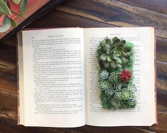 Succulent Planter. Book Planter. Bohemian Decor. Succulent Book Planter. Home Accent. Red Book Planter