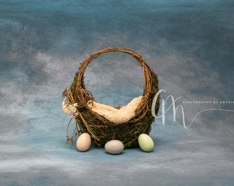 Basket digital backdrop