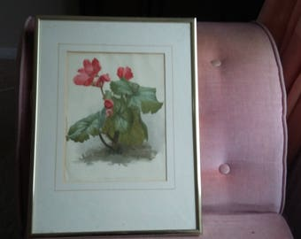 Vintage Print of Begonia 'Winter Gem' Red Flower.