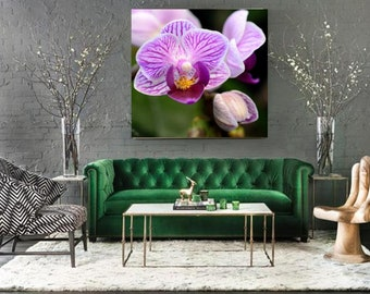 XL picture Magenta pink orchid flower, Modern home decor, Spa art calming wall art bedroom, boho style home, botanical prints on canvas