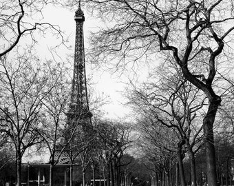Paris black and white photography, Eiffel Tower, Paris photography, black and white photo, winter, trees, branches, fine art print