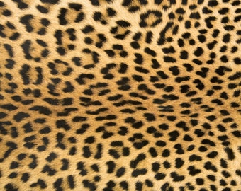 Animal Print Leopard Rug Flooring Background or Floor Drop Photo Prop