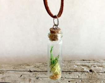 Moss in tiny bottle charm pendant on leather cord