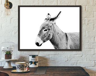 Donkey Print, Poster, Printable art, Gift idea, Wall art, Nature Photography,