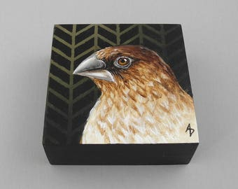 Fancy Finch painting - Darwin finch art block original - wildlife bird painting - adaptive radiation - little brown bird art - forest green