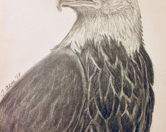 Graphite Drawing - Eagle