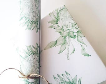 PROTEA/Green/GIFT WRAP/Wrapping Paper/Hand Drawn/Botanical Art