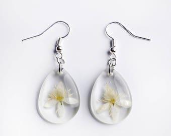 Resin earrings with real flowers-clematis flowers-drop earrings-