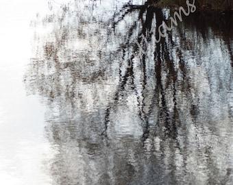 Winter Reflection, Digital Download