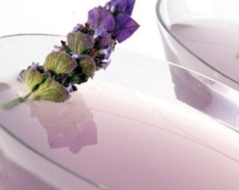 LAVENDER MARTINI 2 or 4 fl oz Citrus Aromatic Cologne/Perfume Spray or a 10 ml Roll On - Accords; Aromatic,Citrus,Fresh Spicy,Floral,Herbal