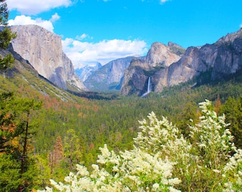 Inspiration Point, Yosemite National Park, California, Mountains, Flowers, Waterfall, Nature, Bridalveil Falls, El Capitan, Half Dome