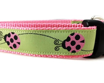 Dog Collar, Ladybug, 1 inch wide, adjustable, quick release, metal buckle, chain, martingale, hybrid, nylon