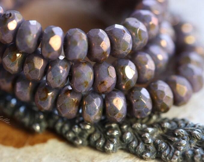 PENSTEMON .. 30 Premium Czech Rondelle Glass Beads 3x5mm (B45-st)
