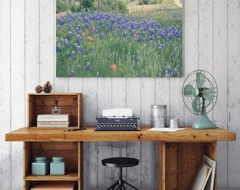 Texas photography, texas bluebonnets, texas art, bluebonnet canvas wrap, large wall art, bluebonnet art, rustic decor, texas decor, nature