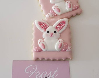 Decorated Easter Bunny Cookies Custom Colors Available ~1 Dozen~Frost Yourself Cookies