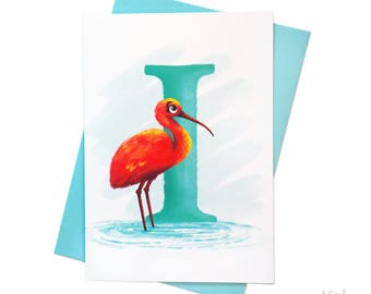Illustrated - Alphabet - Greeting Card - I is for Ibis