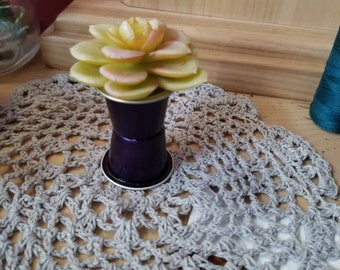 Upcycled miniature succulent plant