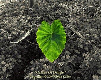GARDEN Of DELIGHT, Vancouver BC, Canada, Clyde Keller photo, 2007