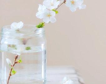 Cherry Blossom Photography, Cherry Blossom, Photography Print, White Flower, Flower Photography, Flower Photo, White Flower Photo