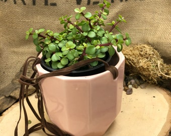Large pink hanging pot with suede hanging rope