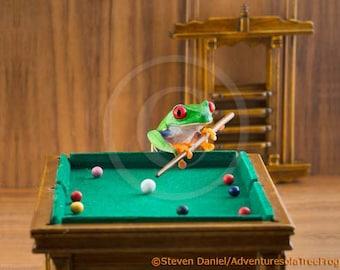 Frog Playing Pool, Billiards Frog, Funny Frog Art