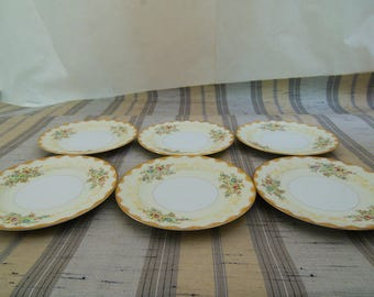 6 Vintage Meito China Dalton Hand Painted Floral Bread Plates F & B Japan