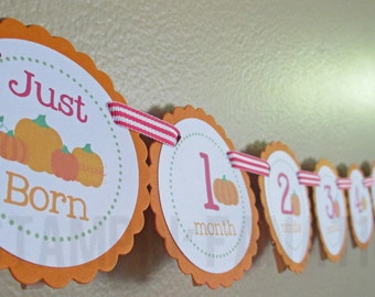 Pumpkin Collection: Just Born/0-12 mos Picture Banner. PINK. Pumpkin First Birthday Banner. Orange. Harvest. Fall. Autumn.