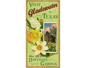 Gladewater Texas Mrs. Lee's Daffodil Garden