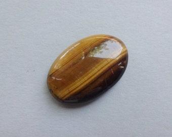 Tiger Eye oval cabochon 33x22 mm