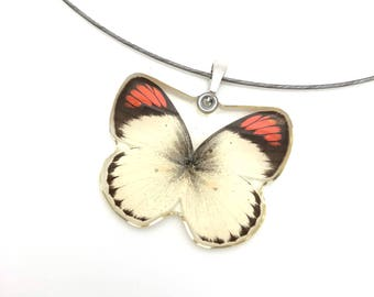 Real Butterfly Necklace, Fairy Wings Pendant, Bohemian Necklace, Christmas Gift, Gift for her, Nature Lover Gift, ONE OF A KIND