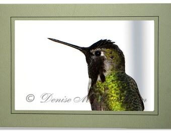 Hummingbird Photo Greeting Card - Bird Card Blank Inside - Blank Hummingbird Note Card - Black Green Bird Photo - Anna's Hummingbird Card