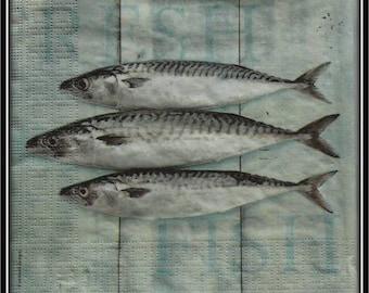 """serviette en papier """"trio de sardines"""""""