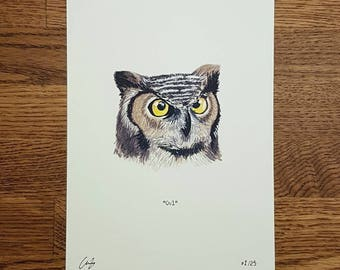 Owl - Wildlife portrait - A5 Fine Art Print - Limited Edition of 25