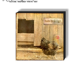 Farm Fresh Eggs Plaque, Chicken Coop Photo on hardback canvas, Barnyard Photo on Canvas, Rustic Farmhouse Decor, Kitchen Farm photo