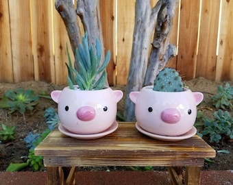 Pink baby pig cute animal/ kids planter pot with succulent
