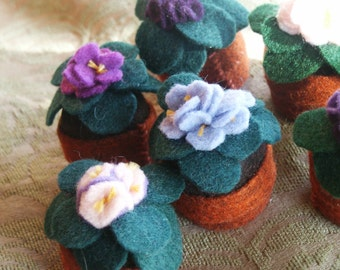 Made to order - Custom made Three-pack: small Bottecap African Violets  free usa ship
