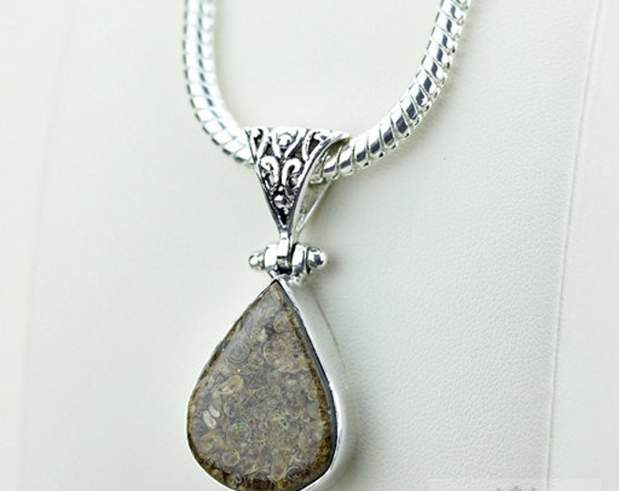 Tear Drop TURRITELLA Fossil Jasper 925 S0LID Sterling Silver Pendant + 4MM Snake Chain & Free Worldwide Shipping P3514