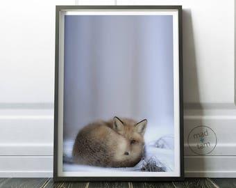 Fox Wall Art, Woodland Animals, Nursery Decor, Woodland Nursery, PRINTABLE Art, Fox Print, Animal Decor, Forest Animals, Nursery Print