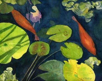 Playing Koi fish goldfish pond Giclee Reproduction 9 x 12