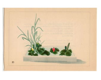 c. 1933 IKEBANA FLOWER ARRANGEMENT Japanese botanical lithograph - original vintage print