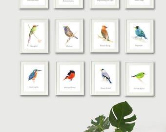 Set of Prints, bird painting print, set of 12 print, bird prints set, wall art print, bird art, watercolor print, Home decor