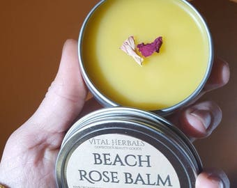 Beach Rose Balm, wild rose cream, rose herbal salve
