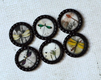 Dragonfly Magnets- Dragonfly Home Decor- Kitchen Magnets- Dragonfly Bottlecap Magnets- Gift Under 10, Gift For Her- Asian Inspired Dragonfly