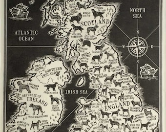 Dogs of the British Isles Limited Edition Linoprint