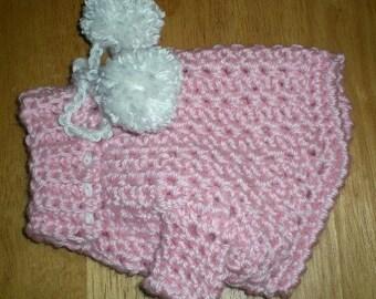 Teacup Chihuahua Sweater